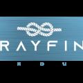 brayfinsgroup